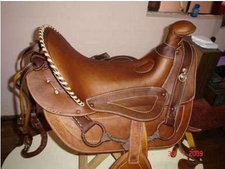 Despachantes argentinos al servicio de los colegas for Monturas para caballos